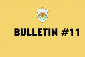 Bullletin 11